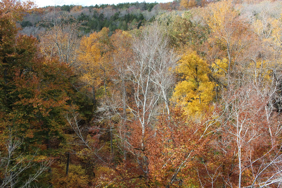Overlooking Pounds Hollow in autumn