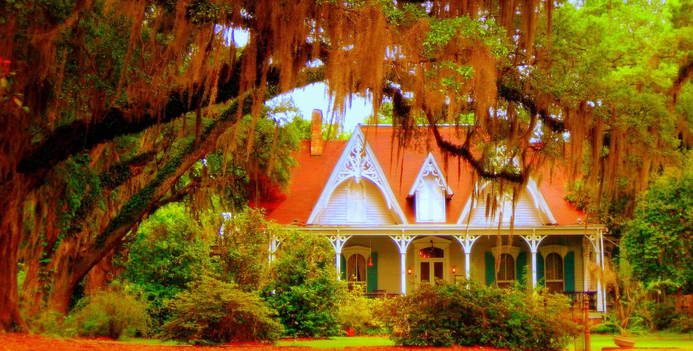 Secret Creole Cottage obscured by live oak trees festooned with Spanish Moss. South Louisiana