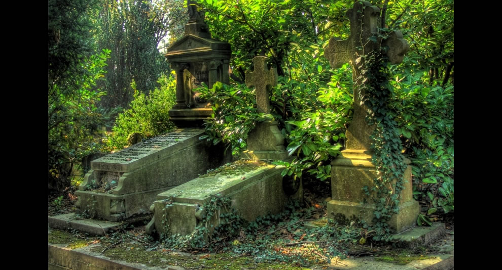 Surreal graves look fit for vampires