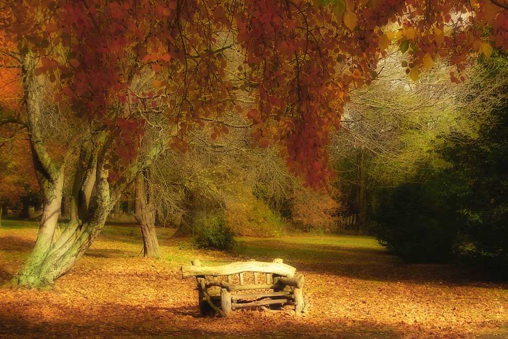 Take a seat to enjoy autumn at Fairlie, South Island, New Zealand