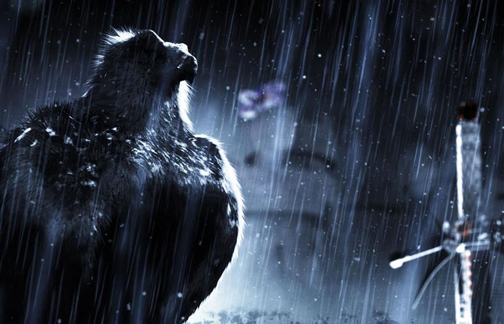 The Raven Edgar Allen Poe, happy halloween