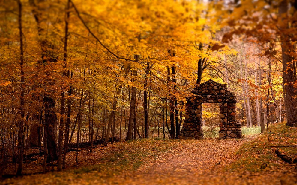 Stone gate in fall forest