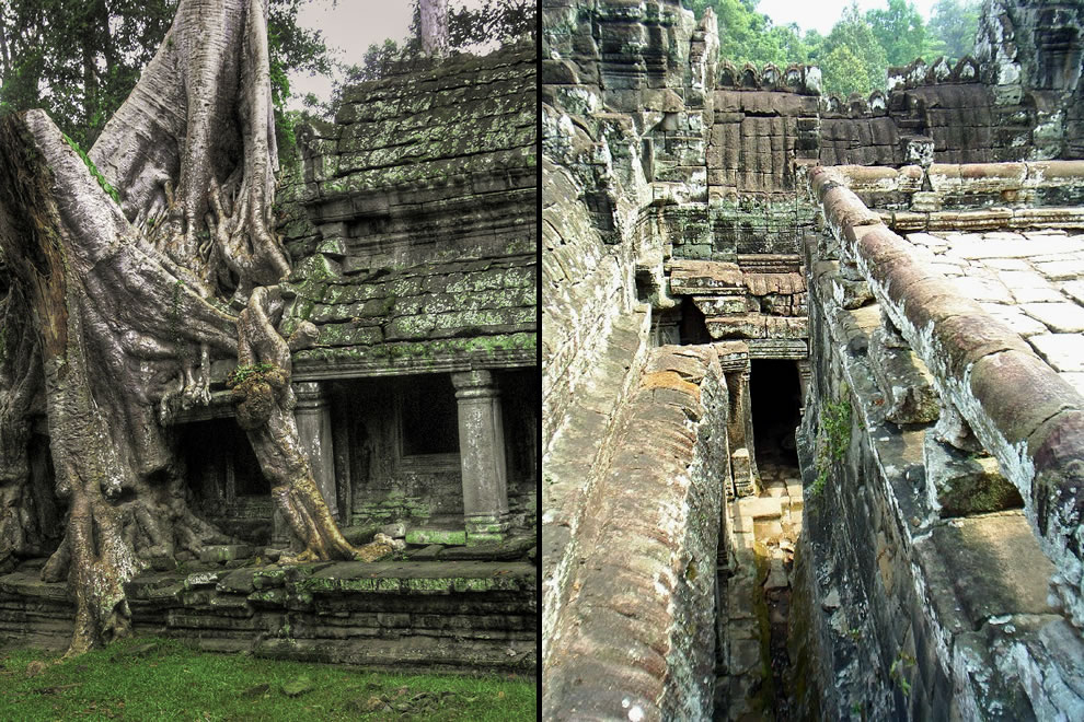 Angkor Wat Tree on left and cramped corridors of ancient Bayon