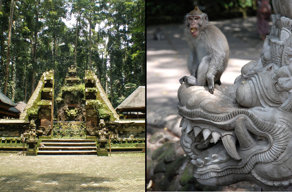 Sangeh Bali Monkey Forest, Monkey perched on demon in Monkey Forest