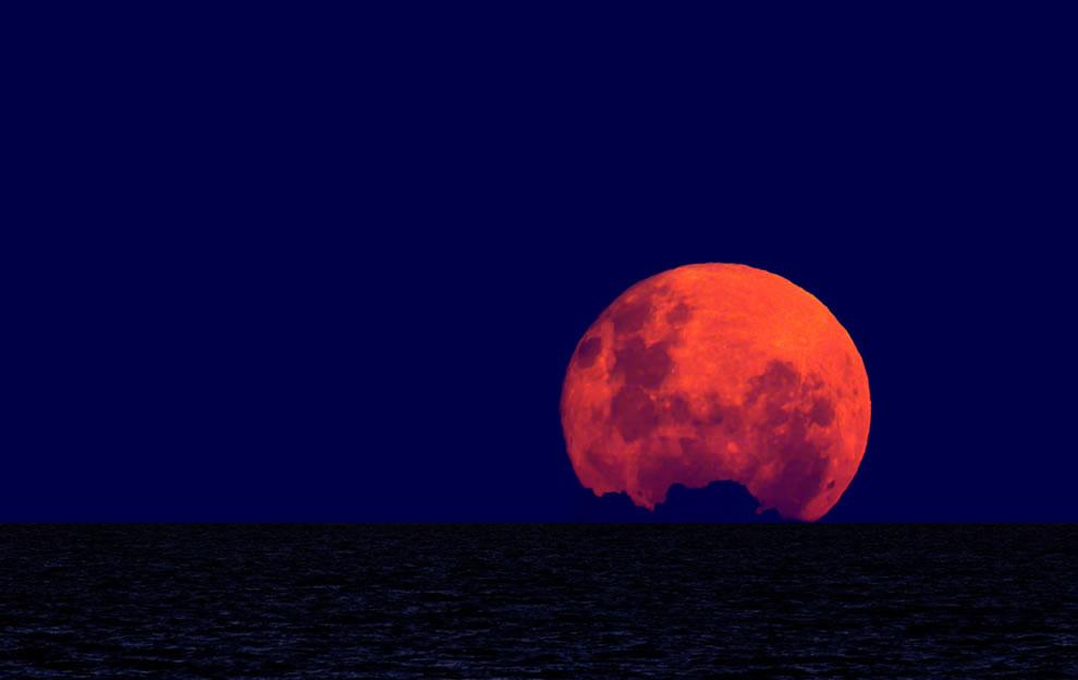 Wolf Moonrise