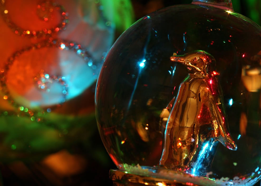 Penguin in a snow globe with holiday lights