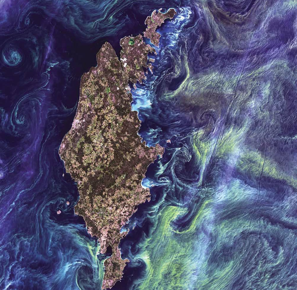 Phytoplankton Bloom, massive congregations of greenish phytoplankton swirl in the dark water around Gotland, a Swedish island in the Baltic Sea