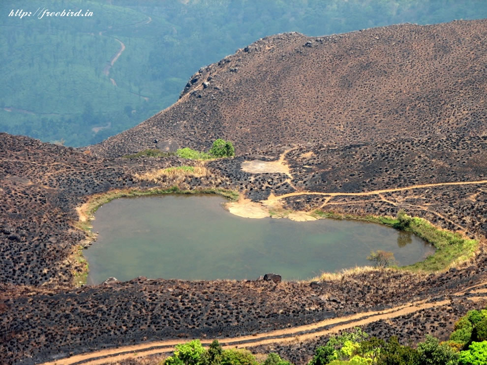 Heart-shaped lake on the way to Chembra Peak, Wayanad, Kerala