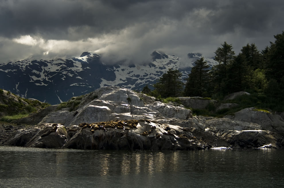 The Marble Islands, Alaska Glacier Bay National Park