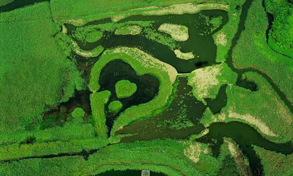 Heart-shaped wetlands in Guandu Nature Park, Taipei, Taiwan