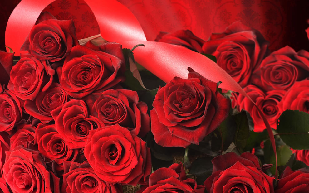 Red roses overall can mean love, beauty, courage and respect, romantic love, congratulations, I love you, sincere love, respect, courage, passion and even job well done