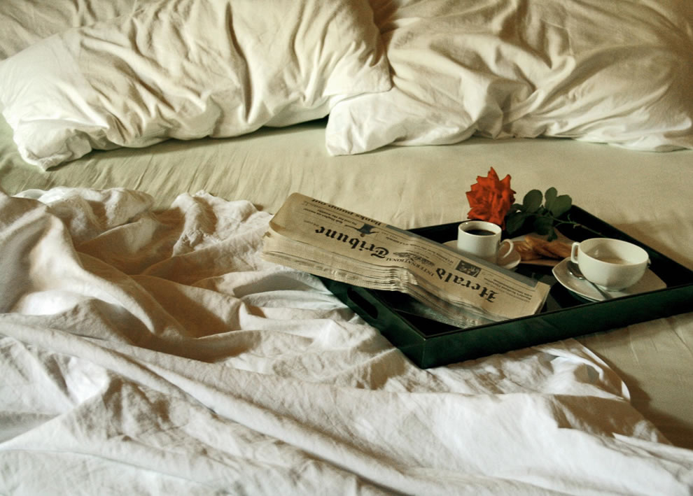 Romance, red rose, newspaper, breakfast in bed