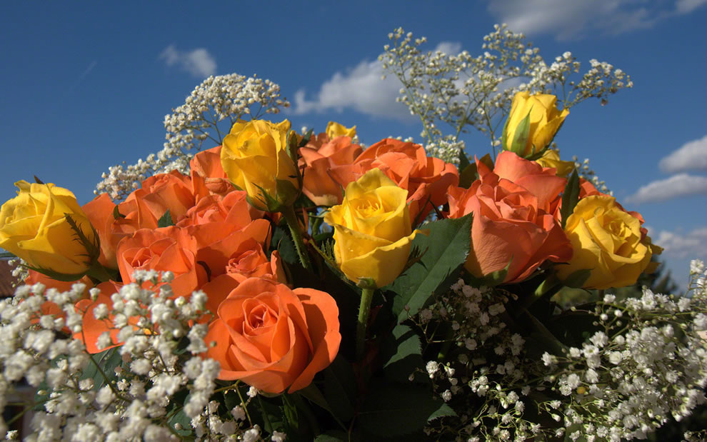 Yellow and orange roses given together symbolize passionate ideas