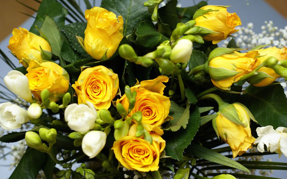 Yellow and white roses combined symbolize harmony