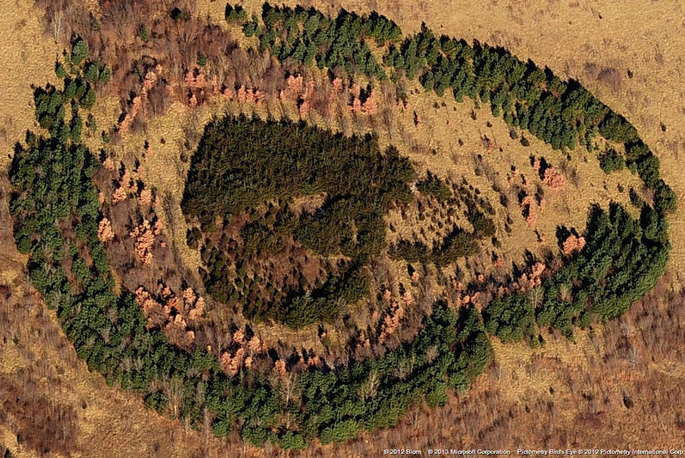 Heart-shaped woods outside of Kansas City, Missouri