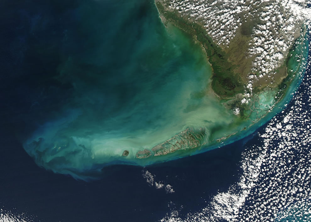 Algal blooms Southern Florida and the Florida Keys, December 2, 2003