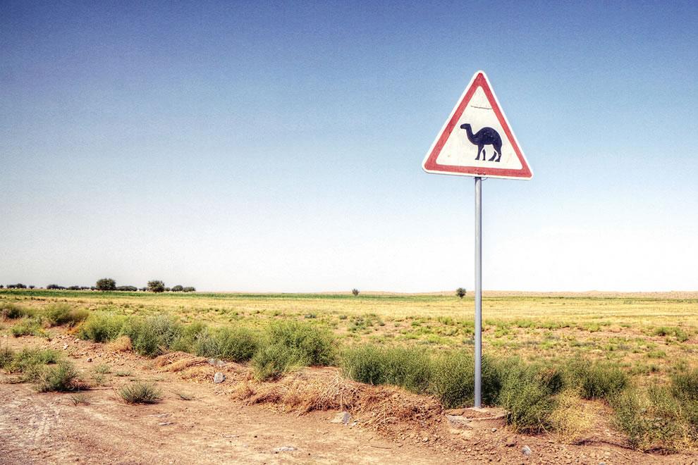 Camel crossing sign in the desert of Turkmenistan