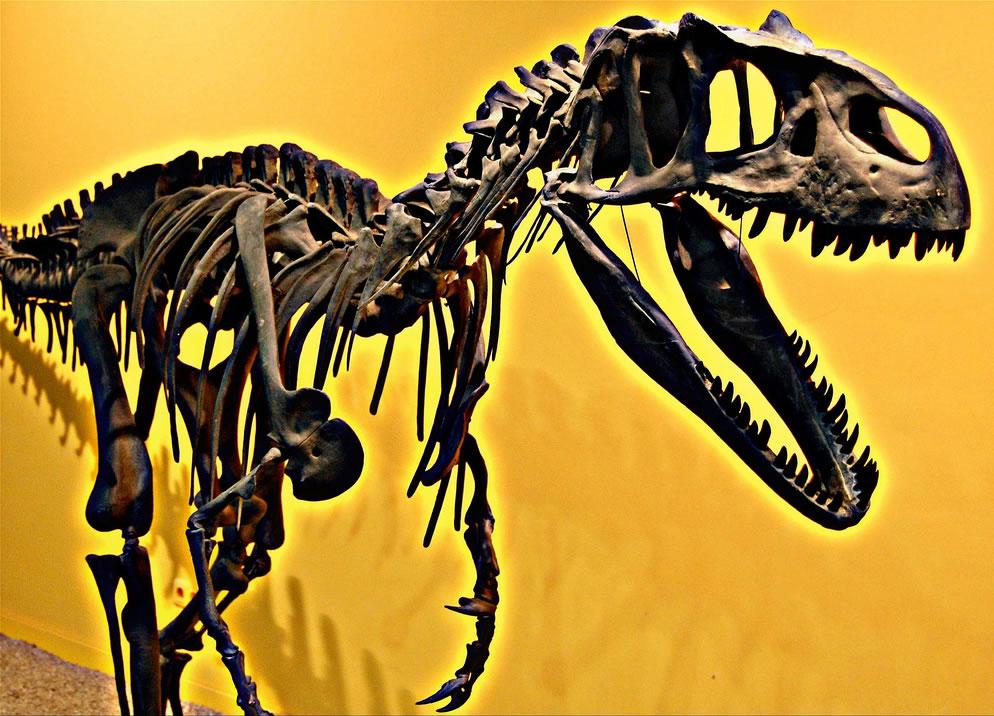 Jurassic Park Velociraptor at Valencia, Spain