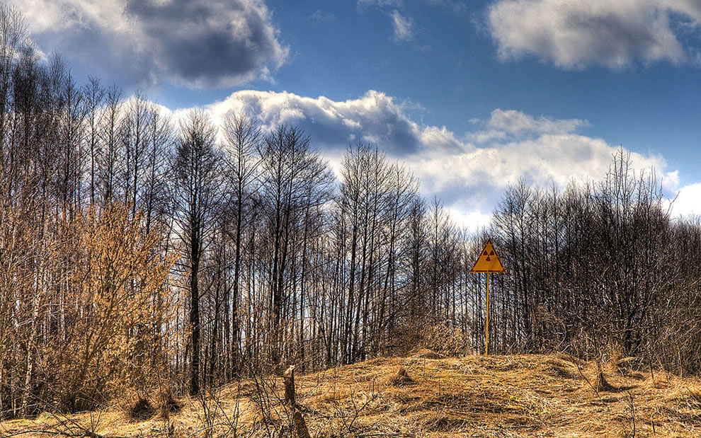 Radioactive warning sign for the Red Forest within the Chernobyl Exclusion Zone 2009