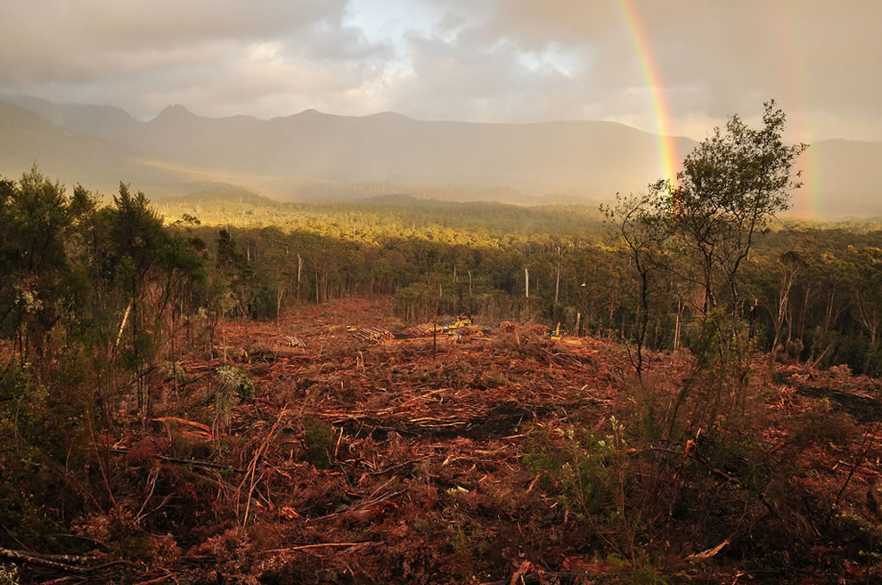 Rainbow and signs of human invasion at the edge of the Tasmanian Wilderness