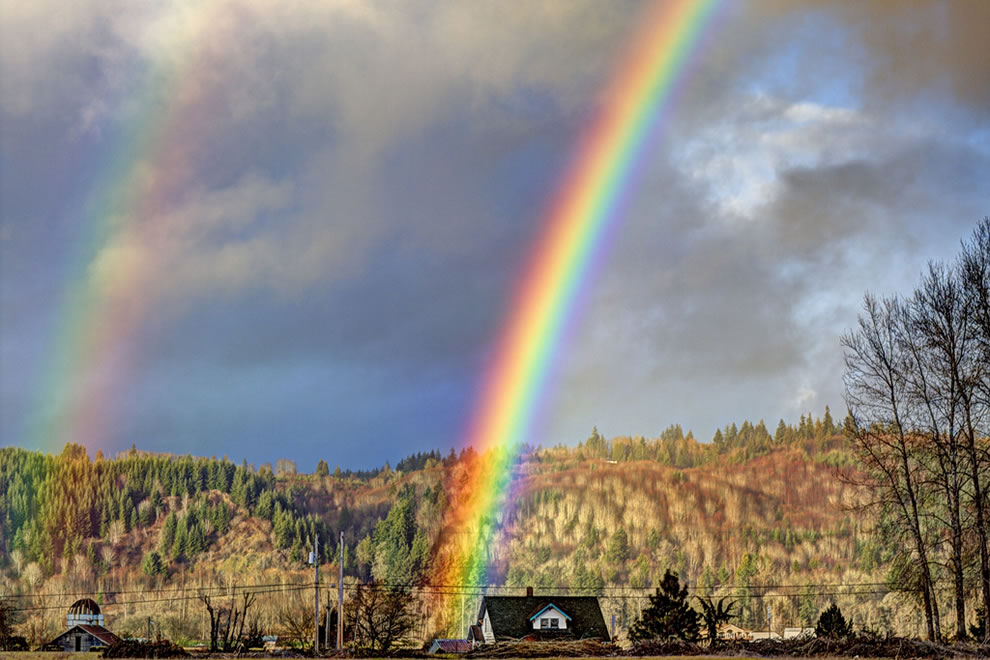 My two favorite colors of the rainbow are gold and leprechaun by Jarod Kintz