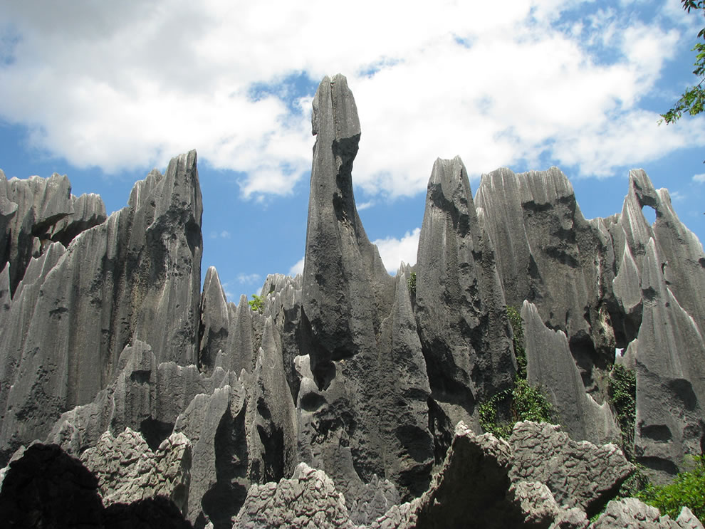 Stone Forest - Shi Lin