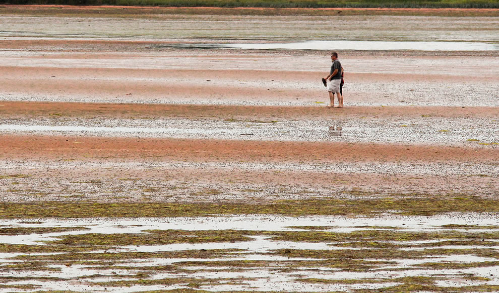 Visible orange sand during low tide along Northumberland Strait, Victoria, Prince Edward Island, CA