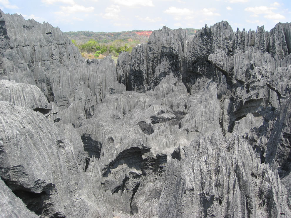 Karst limestone formation, known as tsingy in Malagasy at Bemaraha National Park