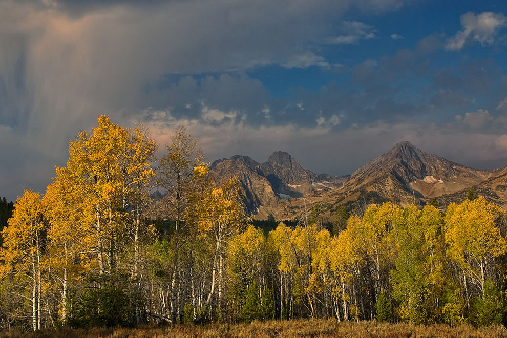 Autumn Rain, fall foliage at Sawtooth Mountains, Idaho