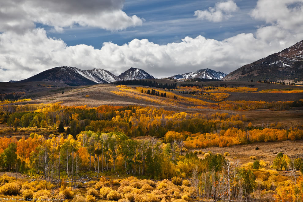 Fall colors of Conway Summit, a mountain pass in Mono County, California