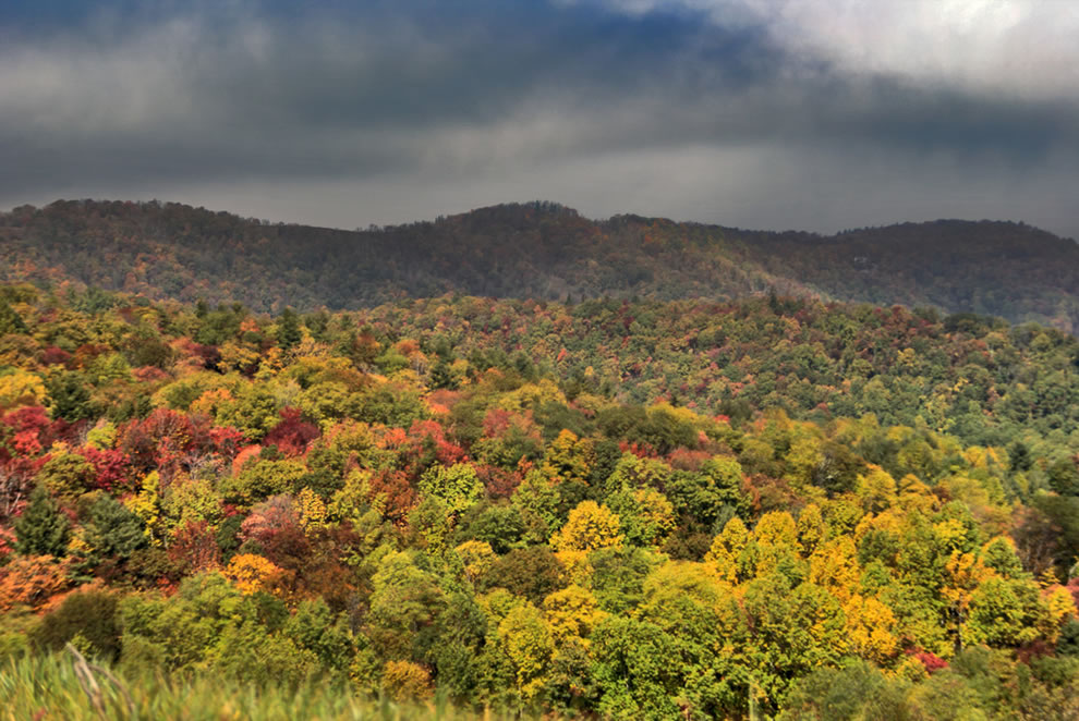 Autumn escape in North Carolina Smoky Mountains, GSMNP