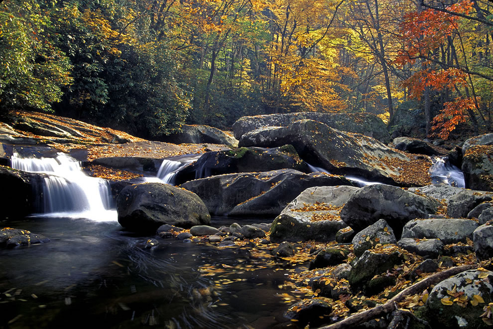 Big Creek Cascade, Great Smoky Mountains National Park