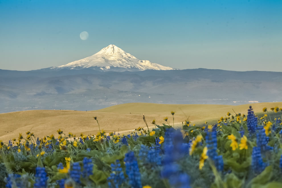 Columbia River Scenic Gorge Area, National Forest Region 6 Pacific Northwest