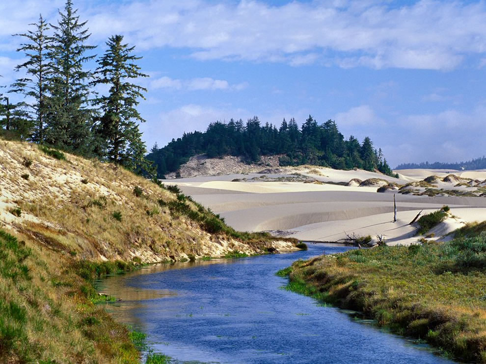 Eel Creek at Oregon Dunes National Recreation Area