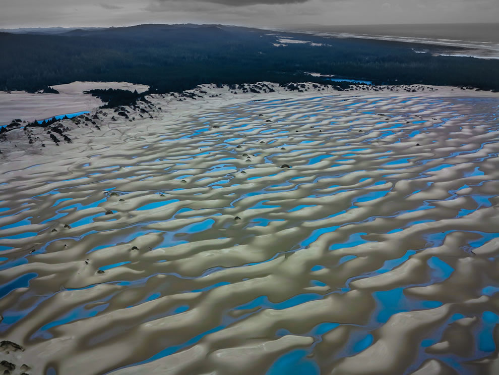 Frozen pools in the sculpted sands of Oregon Dunes National Recreation Area