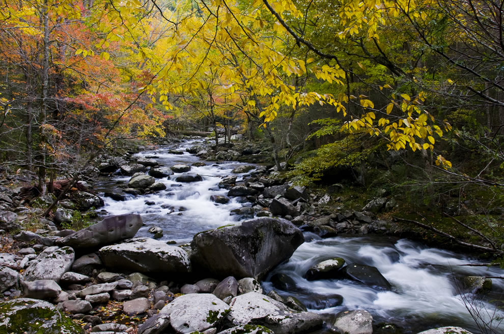 Middle Prong of Little River, Walker Valley, Great Smoky Mountains
