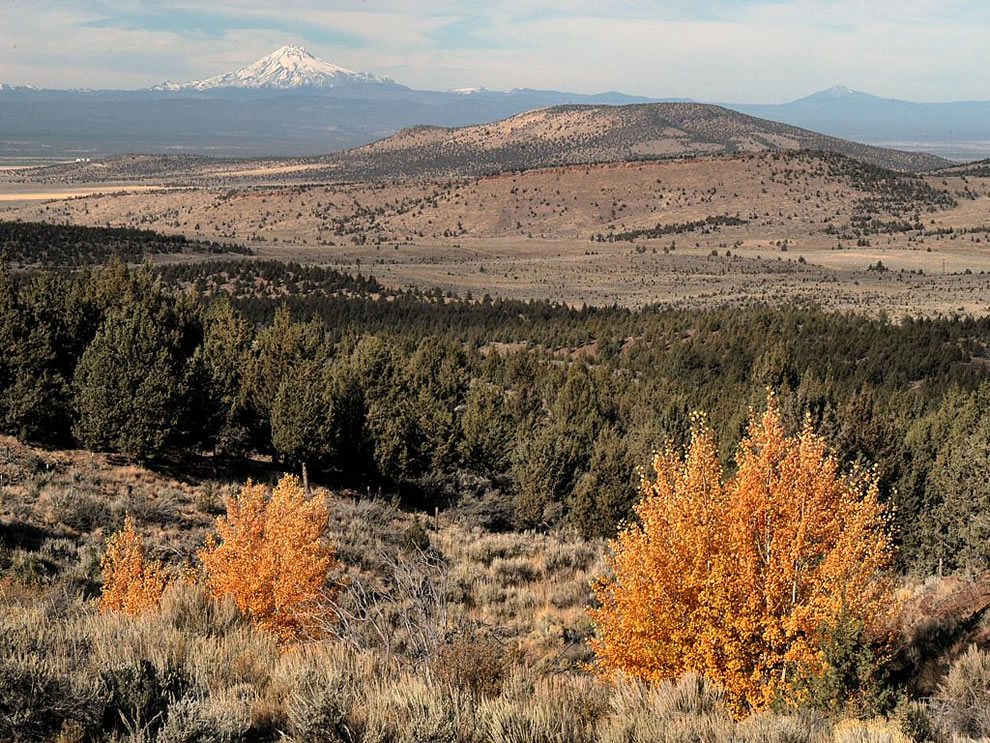 Ochoco - Crooked River Grassland in Fall