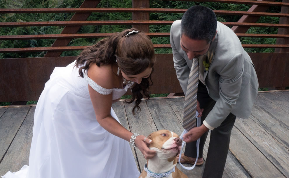 Ring bearer needs a little scratch