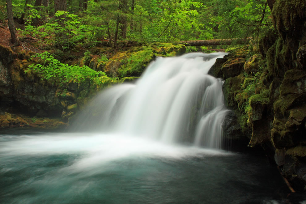 Thundering waters at Whitehorse Falls, Umpqua National Forest