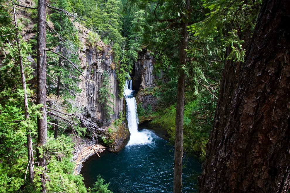 Toketee Falls at Umpqua National Forest, Pacific Northwest National Forests