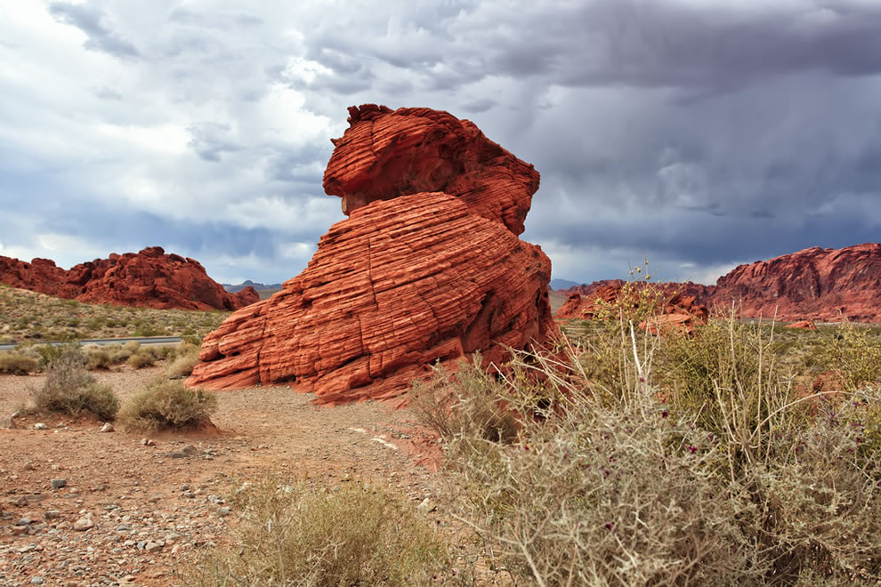 Beehives at the Valley of Fire State Park