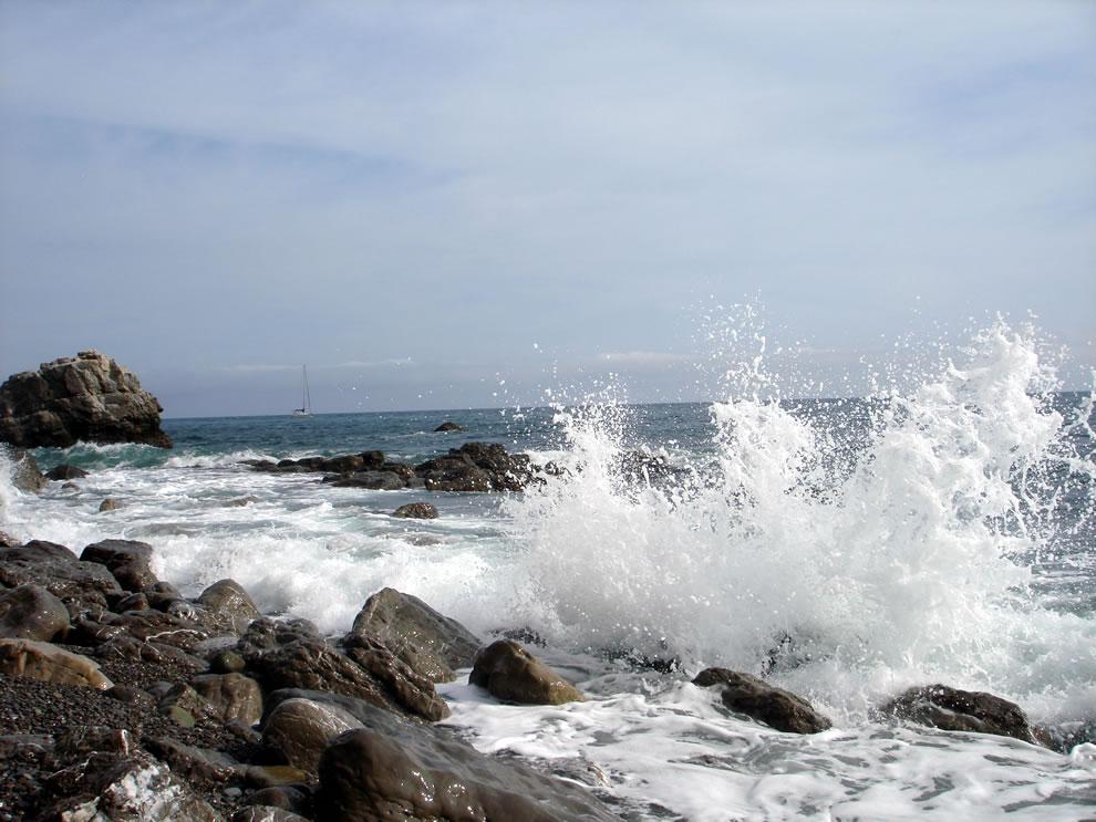 Cape Martyan Reserve, Crimea