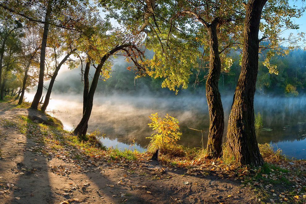 Wikimedia Picture of the Year 2nd place, National park Sviati Hory (Holy Mountains), Donetsk Oblast, Ukraine