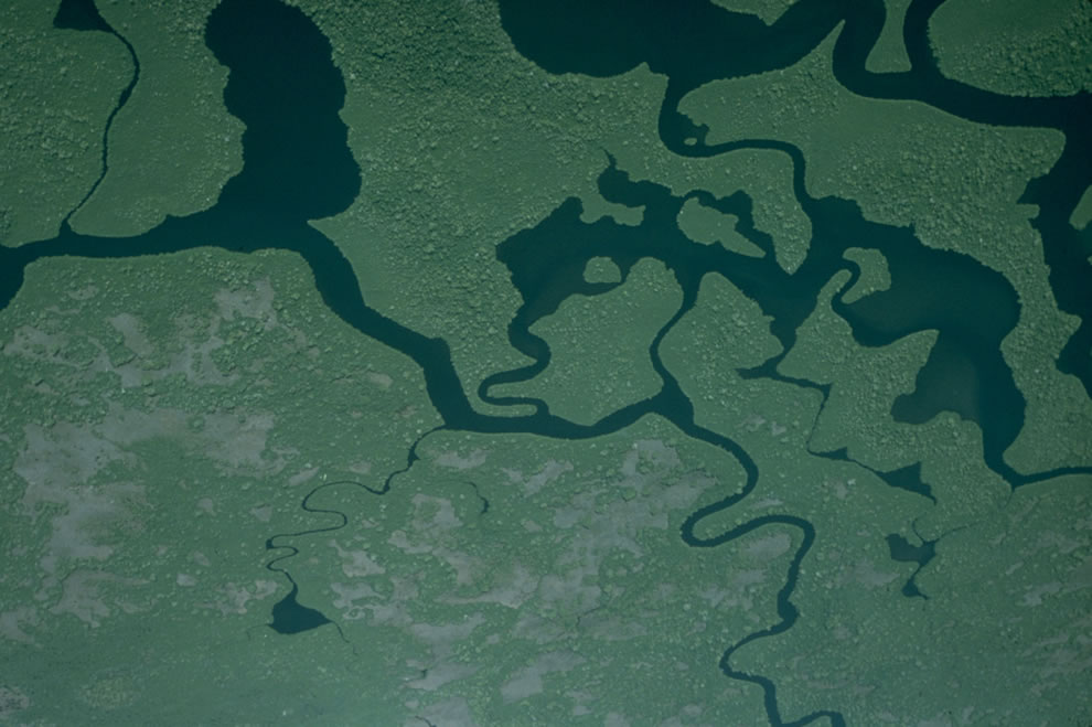 Aerial of Everglades National Park waterways