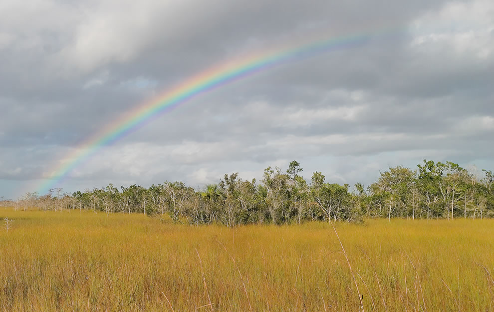 Everglades Rainbow, Everglades National Park