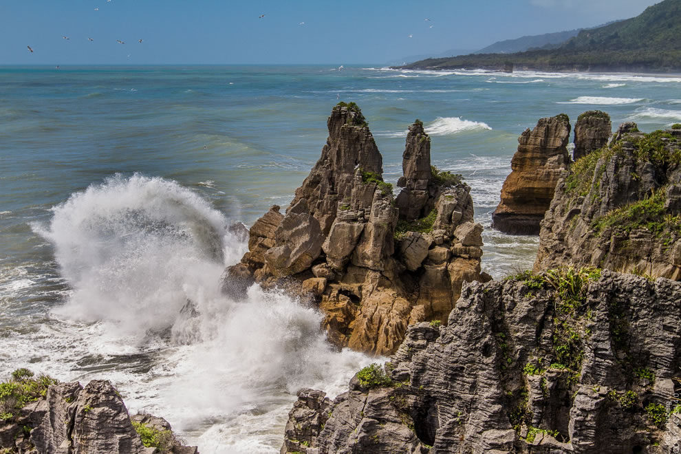 Birds and crashing waves of Tasman Sea at Pancake Rocks, New Zealand