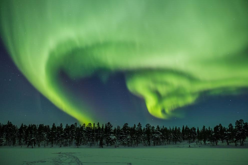 Aurora dancing in the night sky