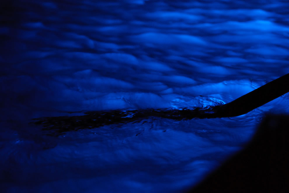 Blue Grotto where ancient Roman have been found