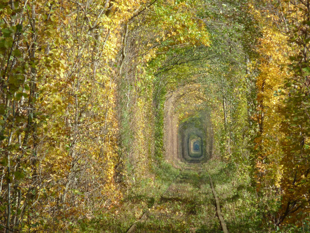 The Tunnel of Love, near Klevan, Rivnenskyi raion