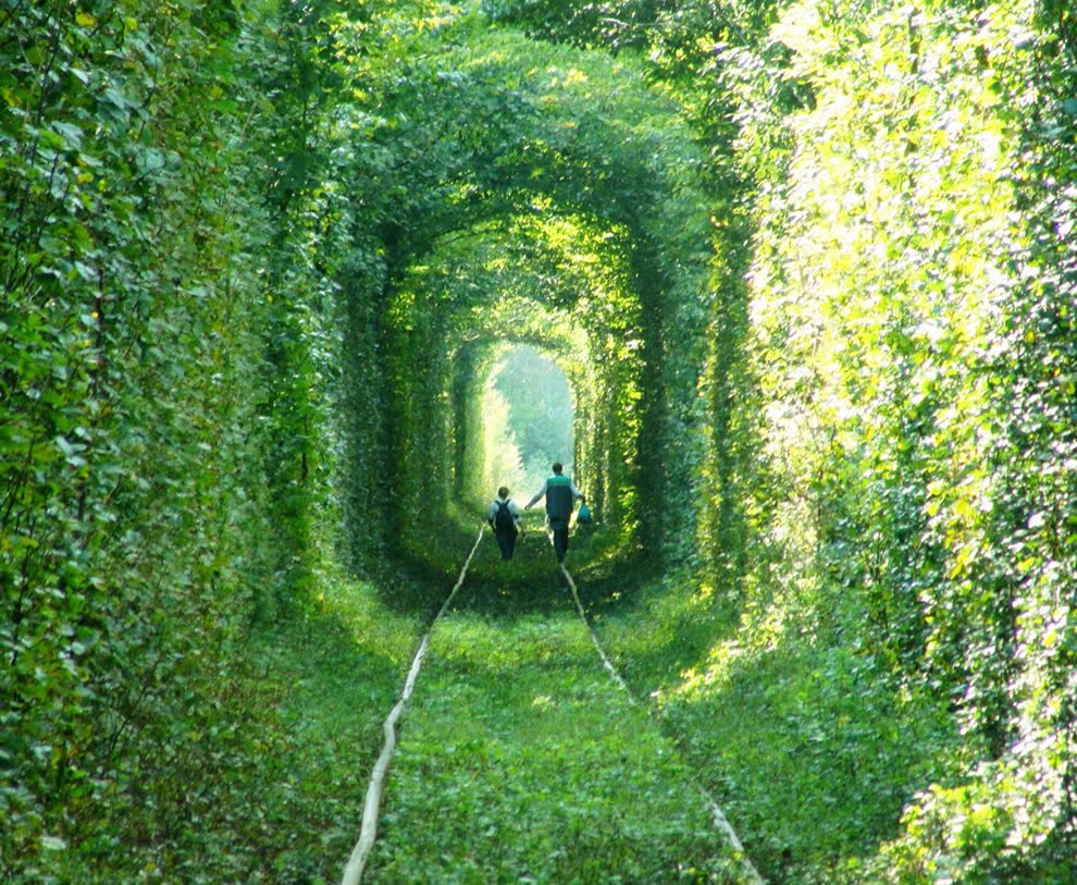 Tunnel of Love at Tsumanska Pushcha National Park